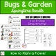 Bugs, Insects and Gardens Activities