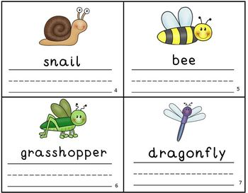 Bugs Insects Vocabulary Writing Practice Mini Book