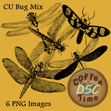 Bugs Insects Dragonflies Clip Art Transparant pngs Commercial Use