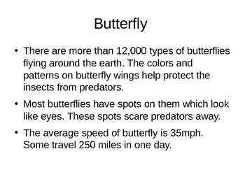 Bugs Insects - Facts about butterfly, spider, moth, cockroach, termite