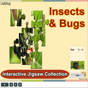 Bugs & Insects Jigsaw Puzzle Collection for Kids PK-K