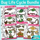 Bugs and Insects Life Cycle Clip Art Bundle | Great for Te