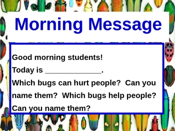 Bugs Insects Power Point