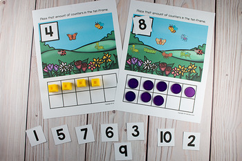 Bugs Insects Ten Frame Game  (Pre-K + K Math)