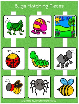 Bugs Matching Book (Adapted Book)