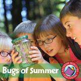 Bugs Of Summer Gr. 1-2