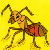 Bugs Sticker or Clipart Ant