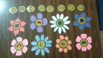 Flowers and Insects Preschool Unit