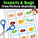 Bugs and Insects Activities Preschool, PreK, Autism - Picture Matching