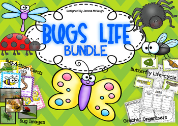 Bugs and Insects BUNDLE - Miss Mac Attack