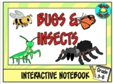Bugs and Insects Interactive Notebook
