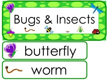 Bugs and Insects Word Wall Weekly Theme Posters.