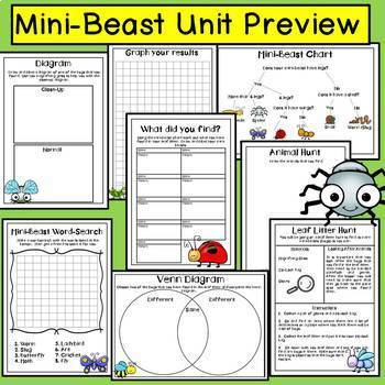 Insects and Bugs (Life and Living Unit) Primary Science
