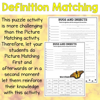 Bugs and Insects ESL Activities Picture and Definition Matching Puzzles