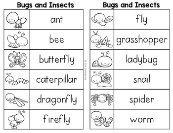 Bugs and Insects Word List - Writing Center