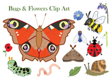 Bugs and flowers clipart