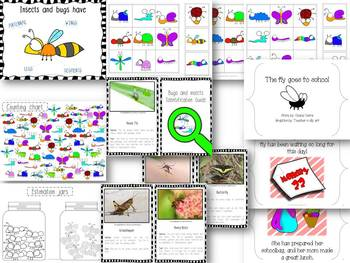 Bugs and insects unit {Prek, Kinder and Special Education)