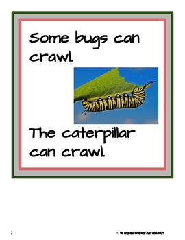Bugs can- Informational Text (level 3-4)