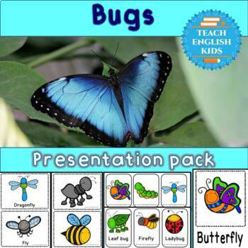 Bugs presentation bundle - vocabulary flashcards, poster, minicards