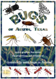Bugs seen in Austin, Texas, vector graphics