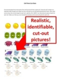 Build A Cell Cut Out Activity