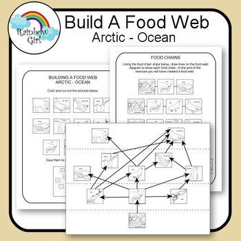 Ocean Food Web Teaching Resources Teachers Pay Teachers