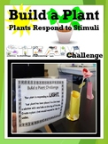 Build A Plant STEAM Challenge