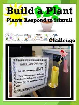 Build A Plant STEAM Challenge