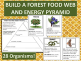 Build  Forest Food Web and Energy Pyramid Performance Task -28 organism cards