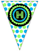 Build Your Own Pennant Banner ~ Green and Blue