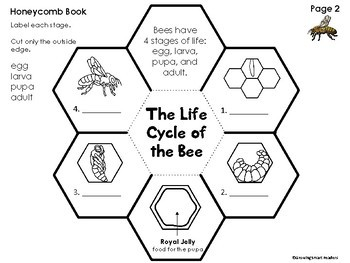 Bee Craftivity and Honeycomb Book