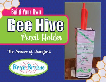 Build a Bee Hive Pencil Holder Activity   Maker Space, Science, Fun, Printable