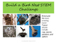 Build a Bird Nest STEM Challenge