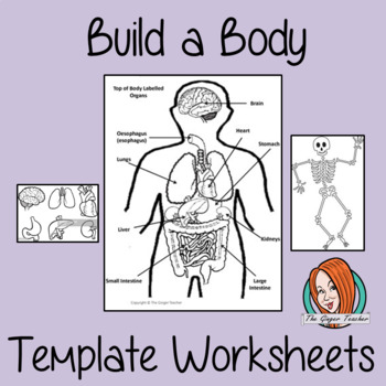 Build a Body, Skeleton and Organs Anatomy Template Worksheets