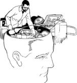 Build a Brain Workshop (A Hands On Neuroanatomy Project)