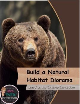 Build a Habitat Diorama