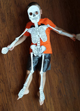 Build a Kid-sized 2D Model of the Human Skeleton