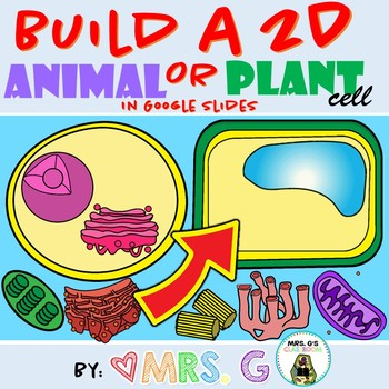 Build a Plant and Animal Cell in Google Slides