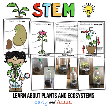 Build a Self-Contained Ecosystem STEM Activity | Plant Observation