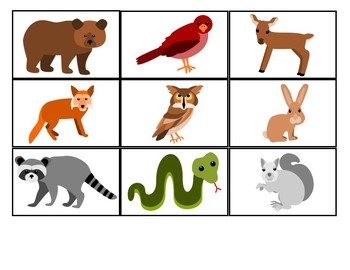Build a Sentence with Forrest Animal Pictures