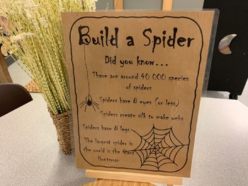 Build-a-Spider Facts Sheet