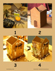 Build a Nature House Project