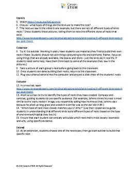 Build a bird nest! Preschool bird or animal themed lesson plan and activity
