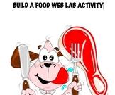 Build a food web ecosystem lab 6th 7th 8th junior high