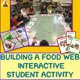 Build an Interactive STUDENT FOOD WEB!  Food chain Activity NGSS LS2-3 and 5-LS2