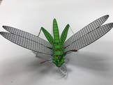 Build an insect