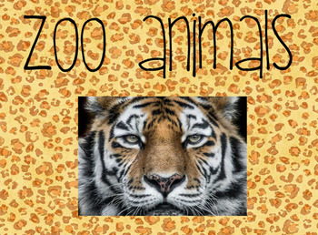 Building Background Knowledge - Zoo Animals