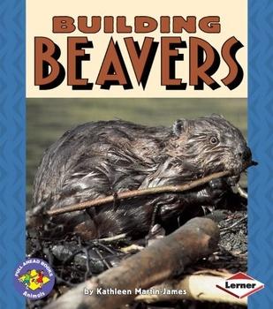 Building Beavers Amazing Words PPT