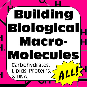 Biochemistry Building Biological Macromolecules ALL Biomolecules for High School