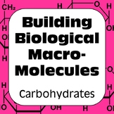 Carbohydrates Biochemistry Building Biological Macromolecules High School